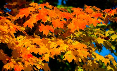Fall Color Destinations around Great Lakes